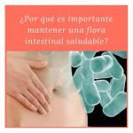 cuidar flora intestinal farmacia mundo vital